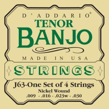 D'Addario Tenor Banjo J63 EJ63
