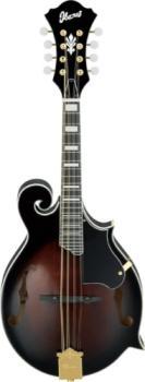 IBANEZ F-Style Mandolin